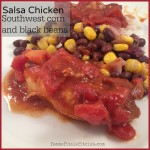 Meal Mondays:  Salsa Chicken