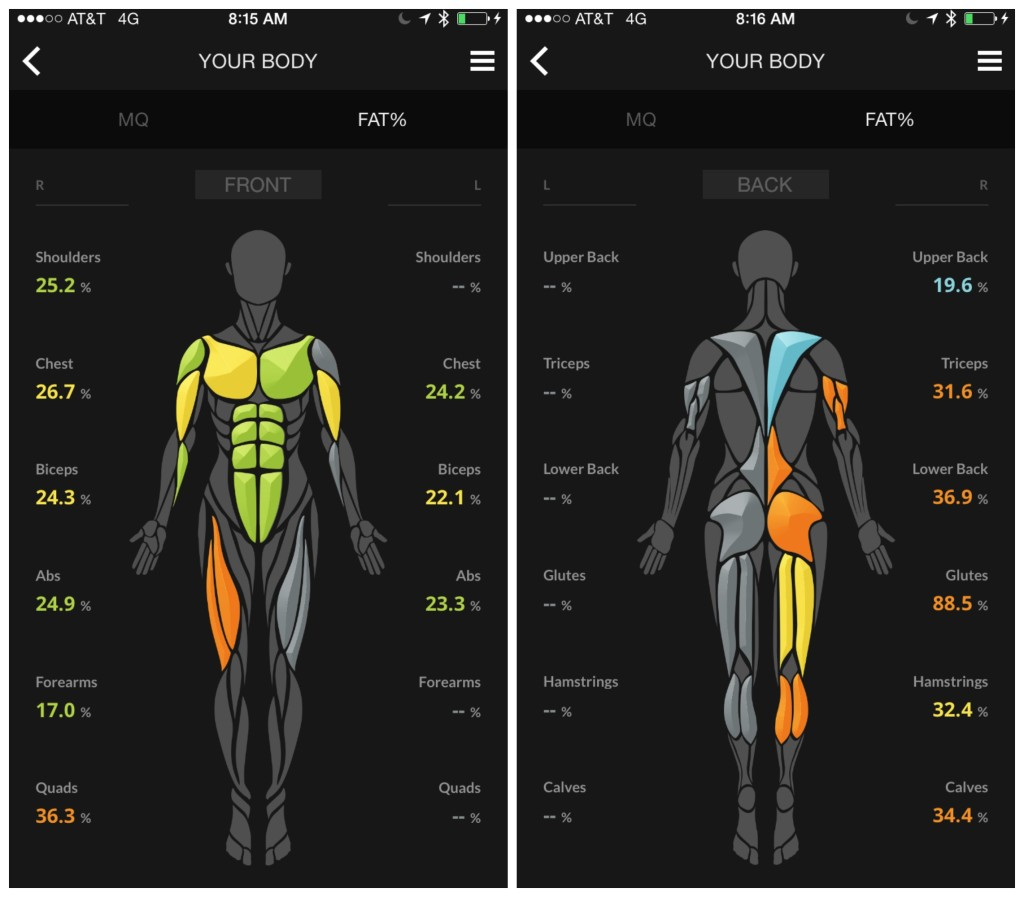 Body Fat Front and Back